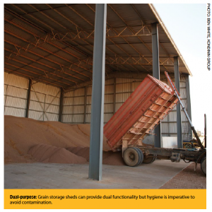 Dual-purpose: Grain storage sheds can provide dual functionality but hygiene is imperative to avoid contamination.