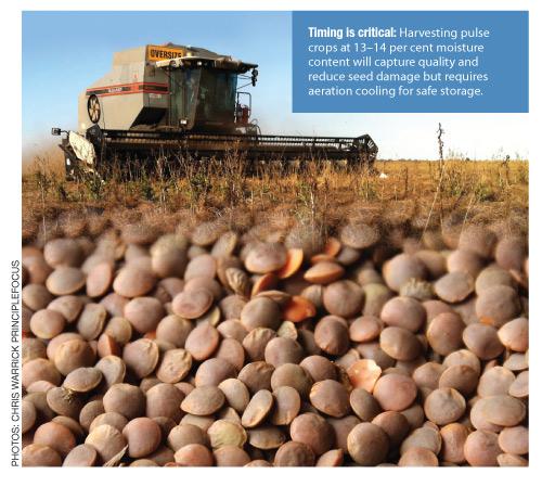 urban pest management in australia pdf