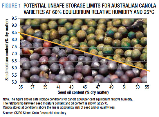 POTENTIAL UNSAFE STORAGE LIMITS FOR AUSTRALIAN CANOLA VARIETIES AT 60% EQUILIBRIUM RELATIVE HUMIDITY AND 25°C