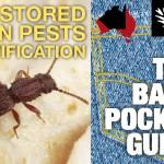 Grain Storage Pests