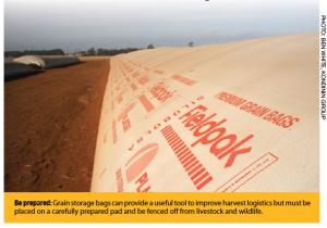 Be prepared: Grain storage bags can provide a useful tool to improve harvest logistics but must be placed on a carefully prepared pad and be fenced off from livestock and wildlife.