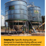 Keeping dry: specific drying silos are designed to maximise drying efficacy and have minimum air-flow rates of between 15–20l/s/t of storage.