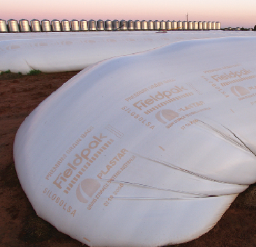 Stored Grain Storage Bags