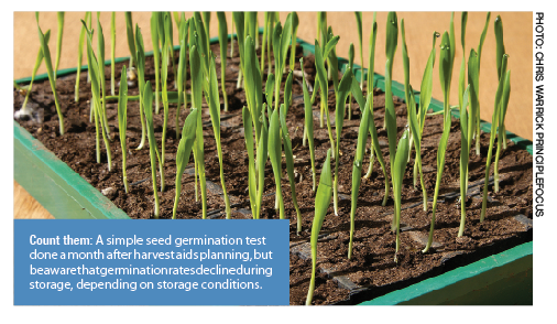 Simple seed germination test