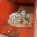 Grain Storage Money in hopper