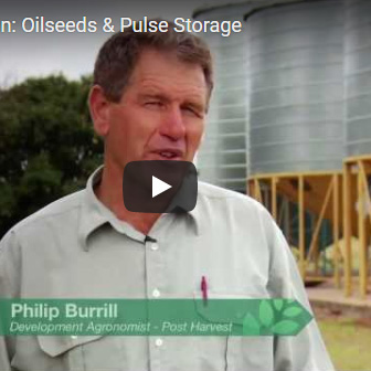 Stored Grain Pulse and oilseed video