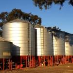 Best Grain Storage Solutions