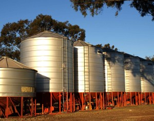 Best Grain Storage Solutions