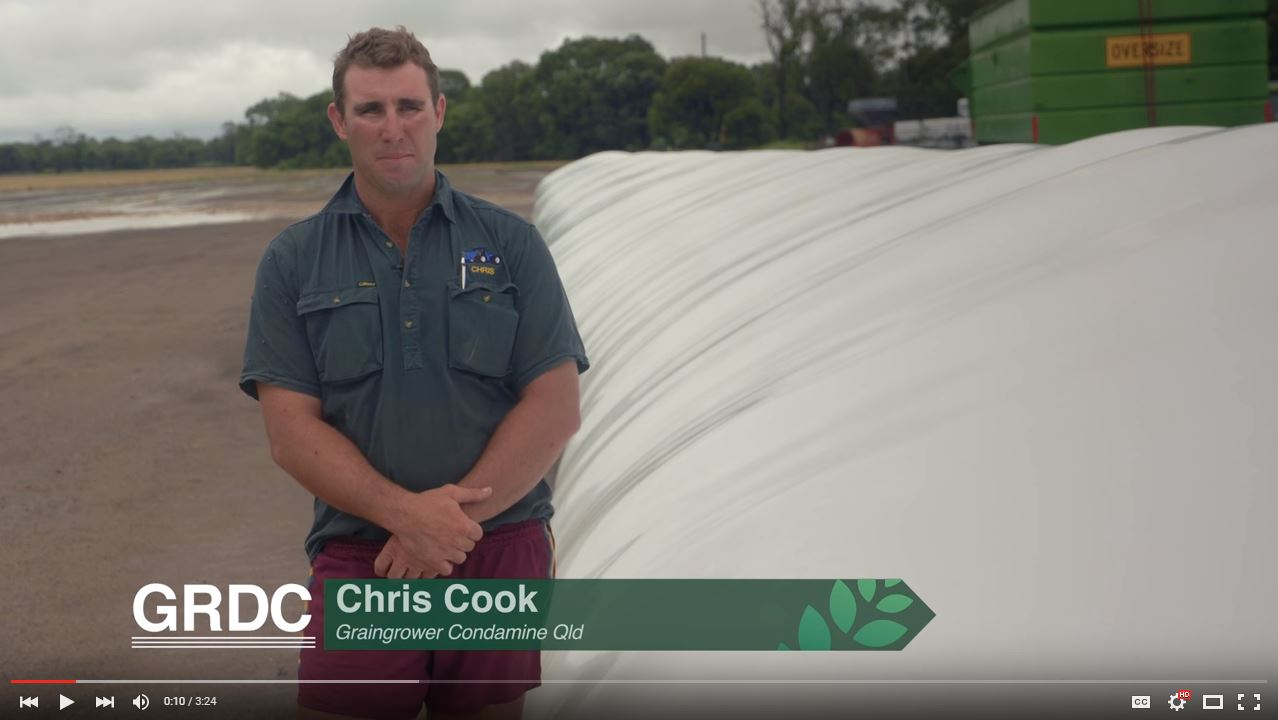 Stored Grain bags growers perspective