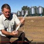 Grain Storage Philip probe trap video