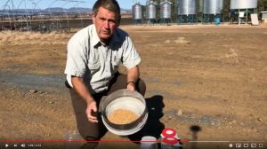 Stored Grain Sieving video